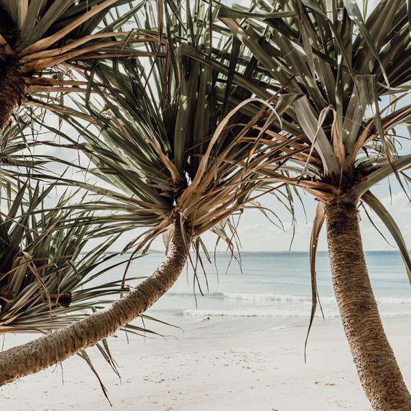 Host Angel Noosa Beach Holiday